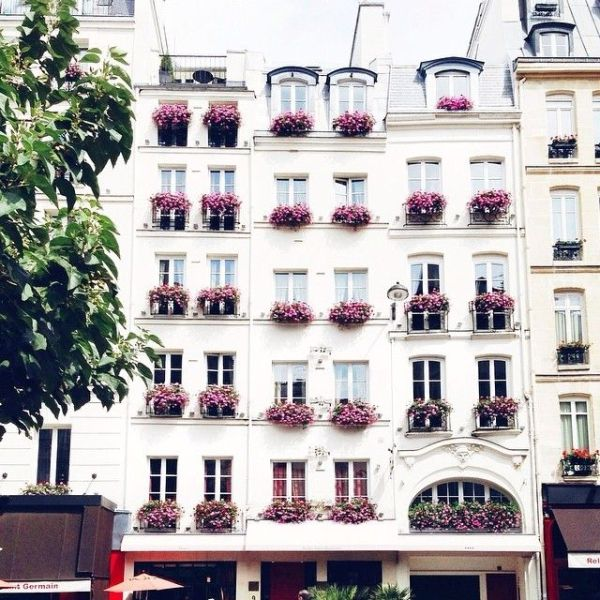 Detailed & Delighted // Macaron Monday: Paris inspo