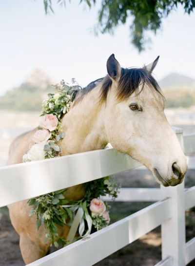 Detailed & Delighted // Equestrian Wedding Inspo
